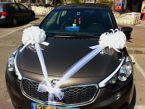 רכב קיה מקושט לחתונה