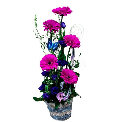 סידור פרחים טריים בשם כחול סגול