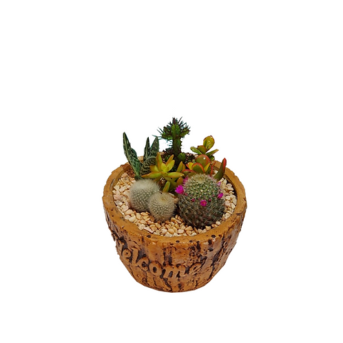 A-cactus-cocktail-in-a-pottery-vessel