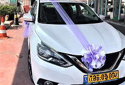 Wedding-car-decoration-q7limo-92.jpeg