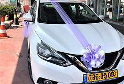 Wedding-car-decoration-q7limo-92.jpeg