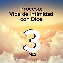Proceso ICD 3.png