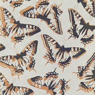 butterflypattern.jpg