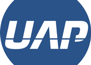 UAP 6 Pin Bump Key