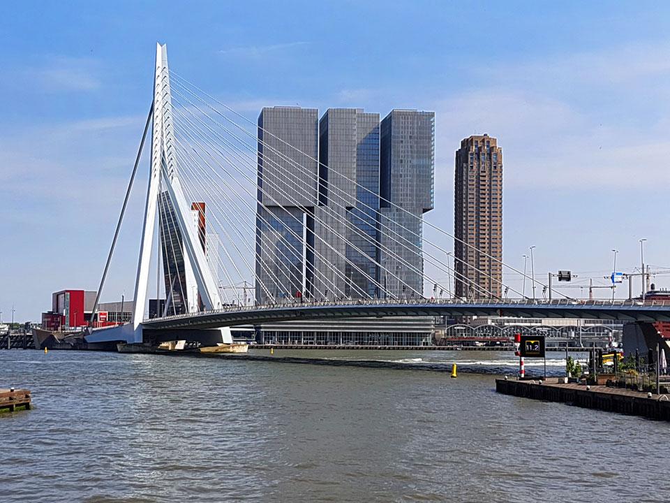 Erasmusbrug; De Rotterdam