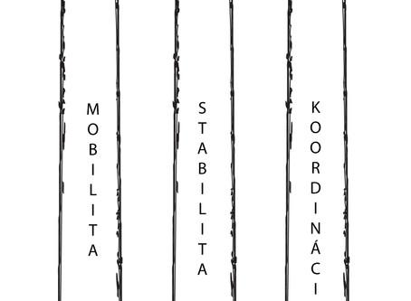 Model lezeckej techniky - Climb SMART