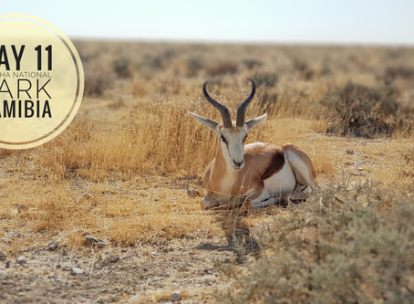 Namibia - Exploration of introspection (part 3)