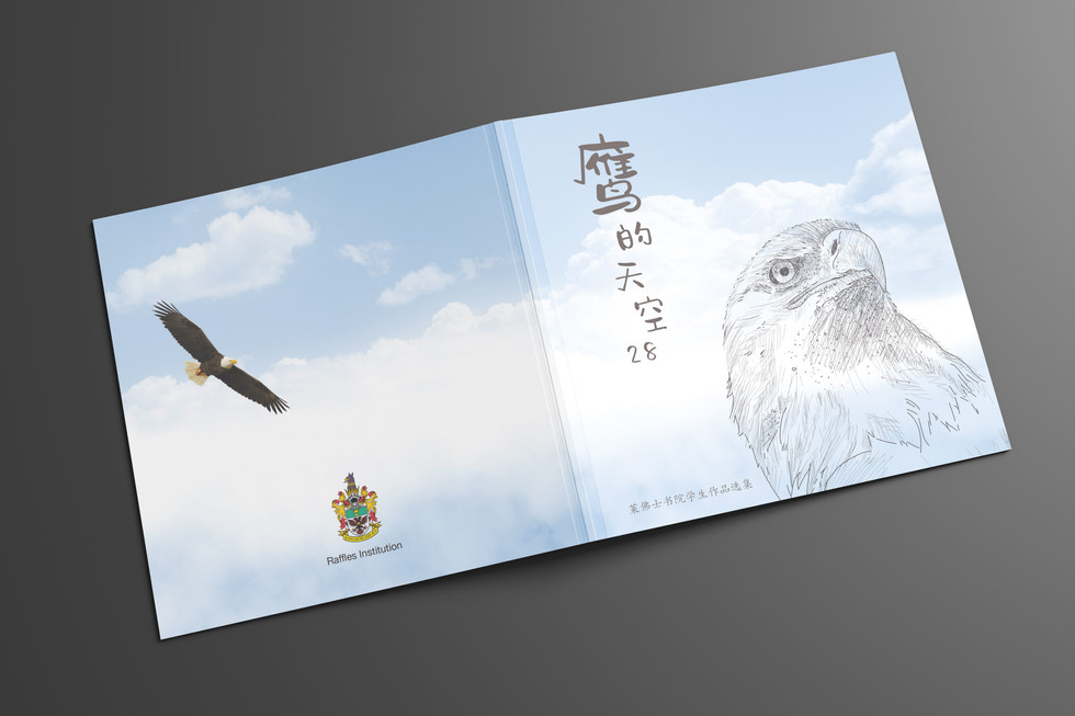 RI-eagle in the sky book cover.jpg