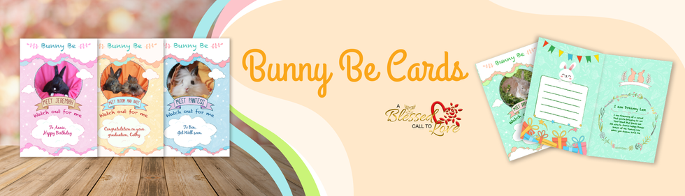 web-banner_bunny-be-card-v2.png