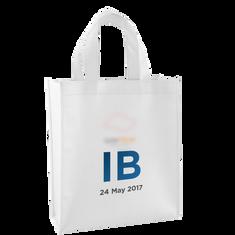 Industry Briefing - bag.png
