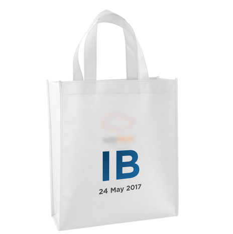 Industry Briefing - bag.png