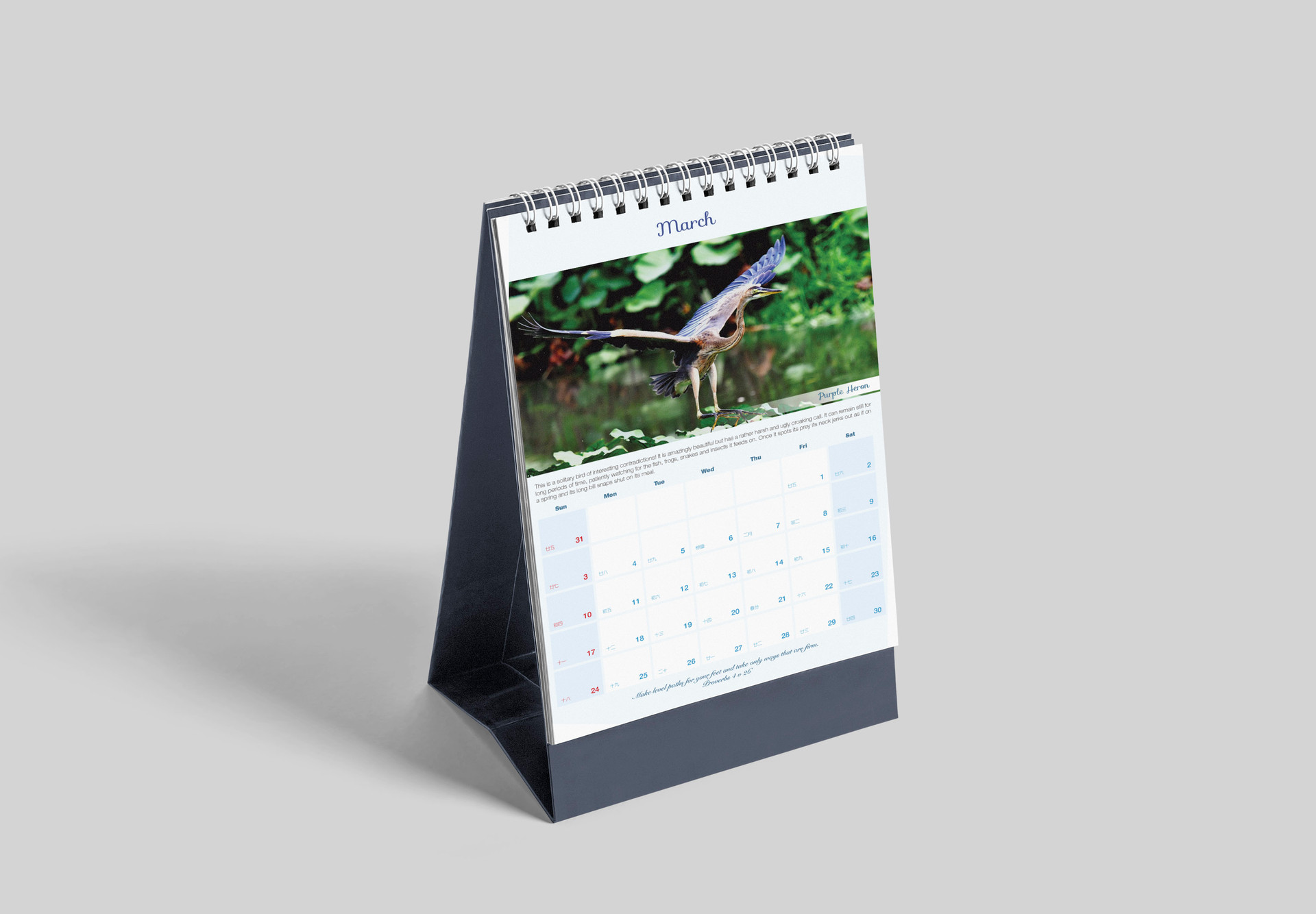 Animal Calendar 2019 - 3.jpg
