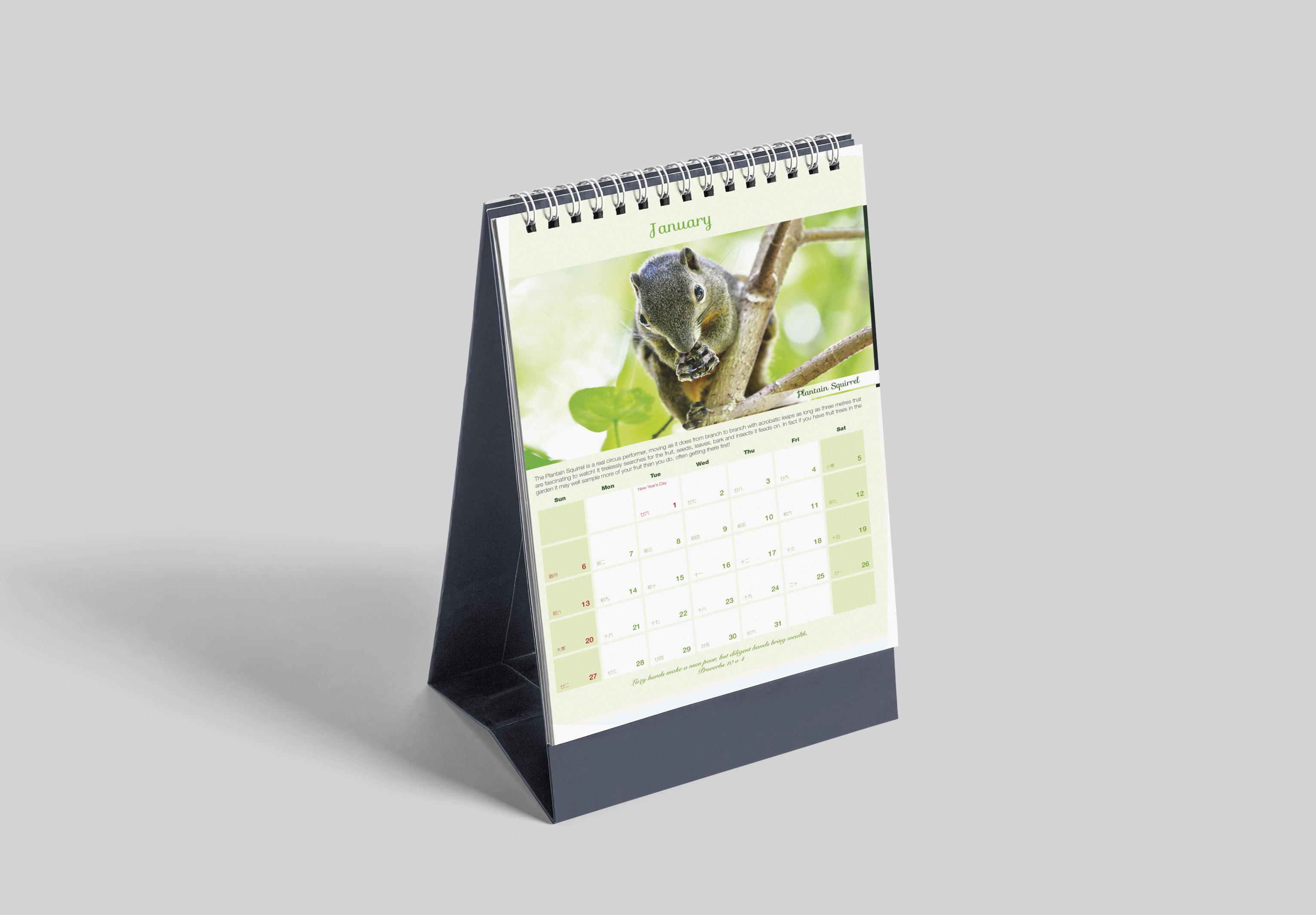 Animal Calendar 2019 - 1