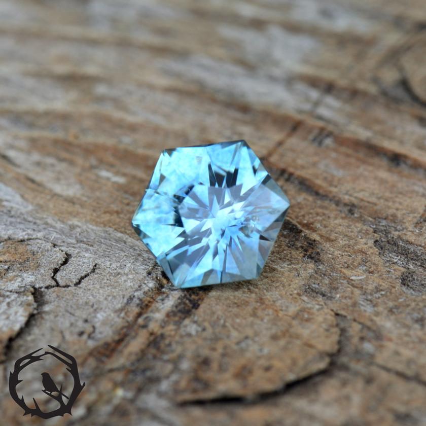 Montana Sapphire Cosmos
