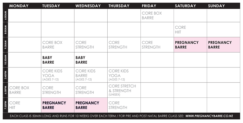 TIMETABLE_2019_TERM2_PREGNANCYBARRE.png