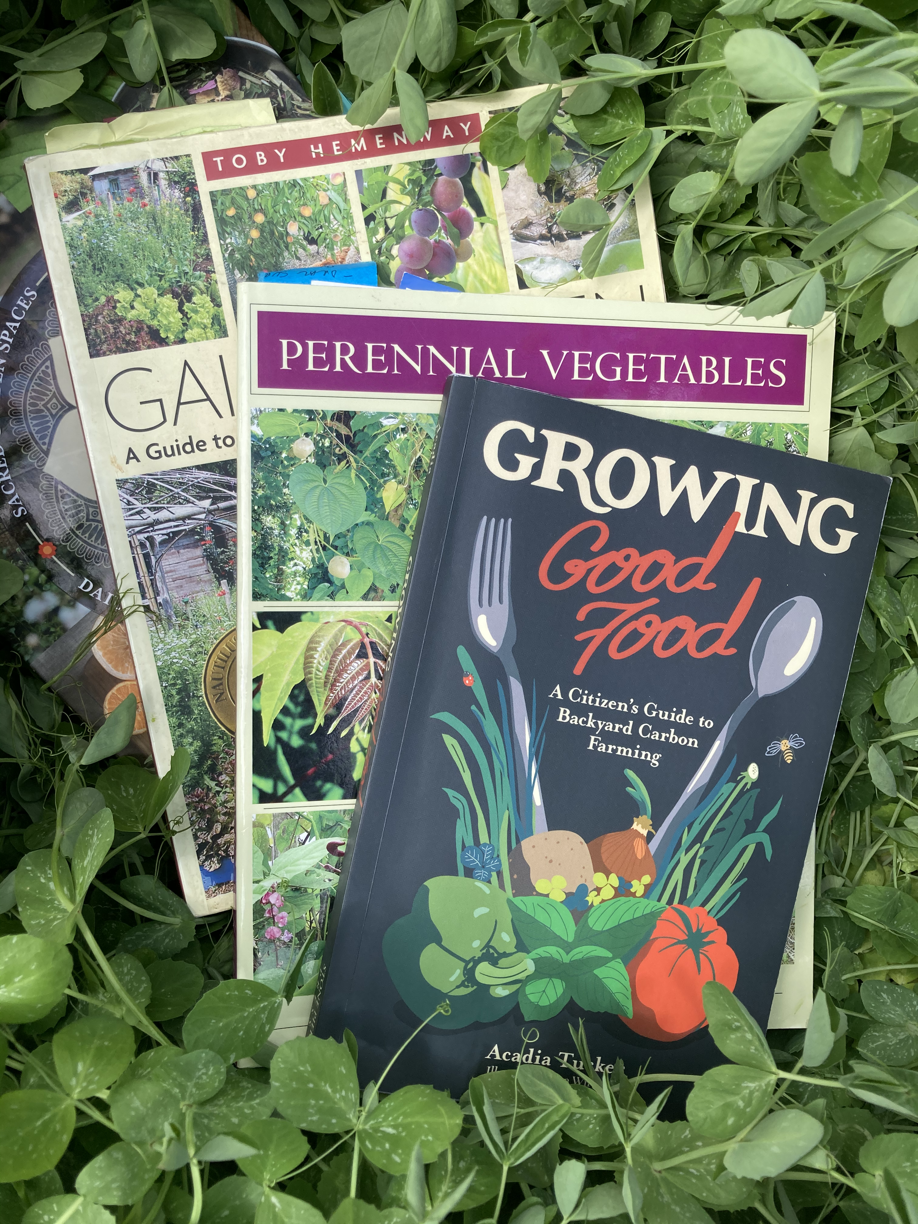 Growing Climate Victory Gardens- Series