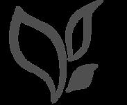 logo Rajah icone gris.png