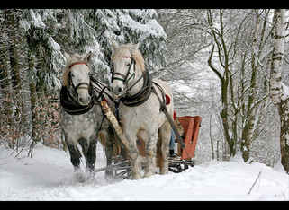 """A Little Farther West  """"Two Step 'Round The Christmas Tree"""""""