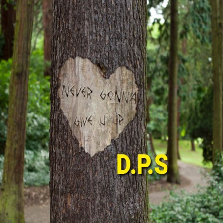 """D.P.S. Is Not Looking For Anyone Else in """"Never Gonna Give U Up"""""""