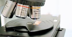 Microscope Slider Image