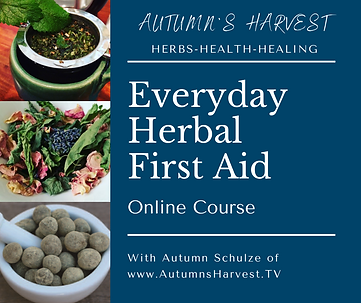 Herbal First Aid Course.png