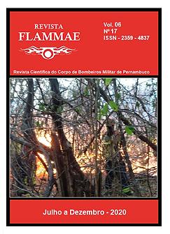 CAPA FLAMMAE 17.png