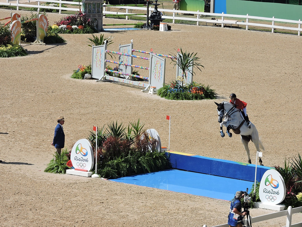equestrianism-1706418_1920.jpg