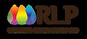 Logo_Final_DropOptions-14.png