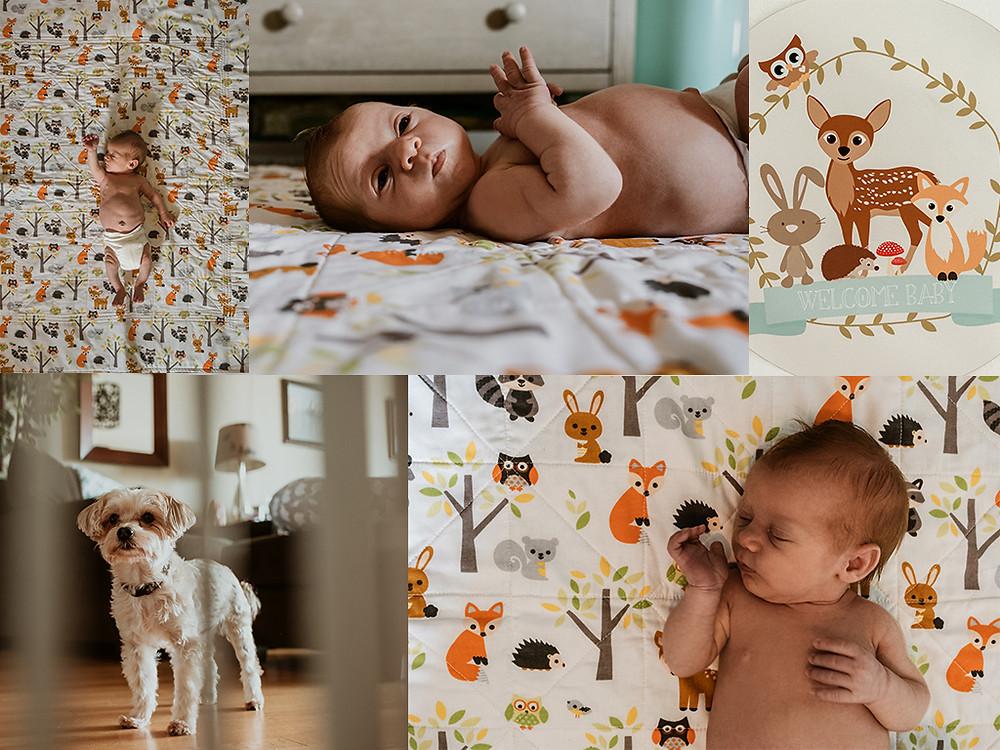 Lifestyle Newborn session Chicago, IL