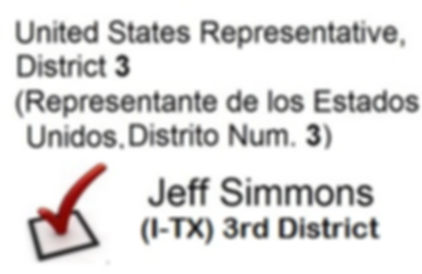 BALLOT sample 25July19.jpg
