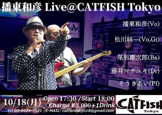 播東和彦 Live_CATFISH Tokyo.jpg