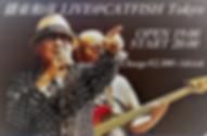 播東ライブ.png