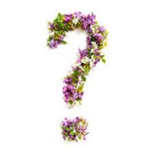Création surprise du fleuriste