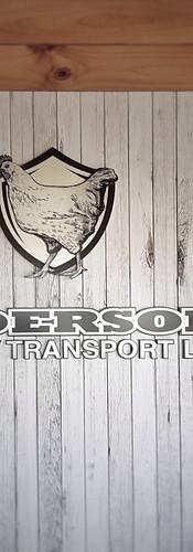 Alderson stainless logo