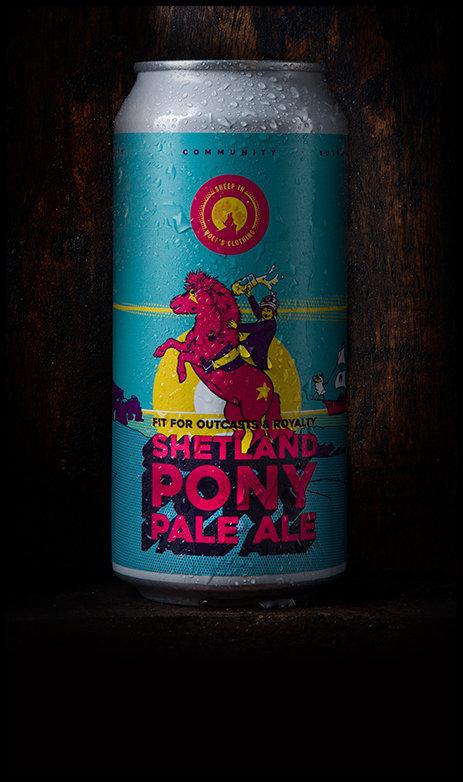 Shetland Pony-L.jpg