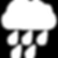 RNMKRS Logo Transparent.png