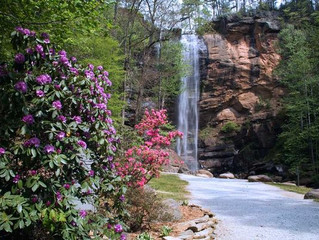 Springtime Events in Toccoa Georgia