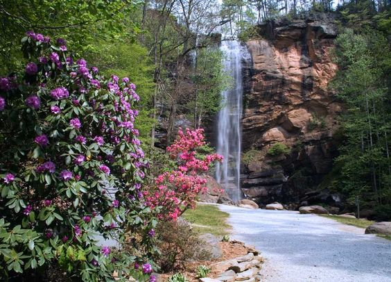 Toccoa Fall waterfall during the spring
