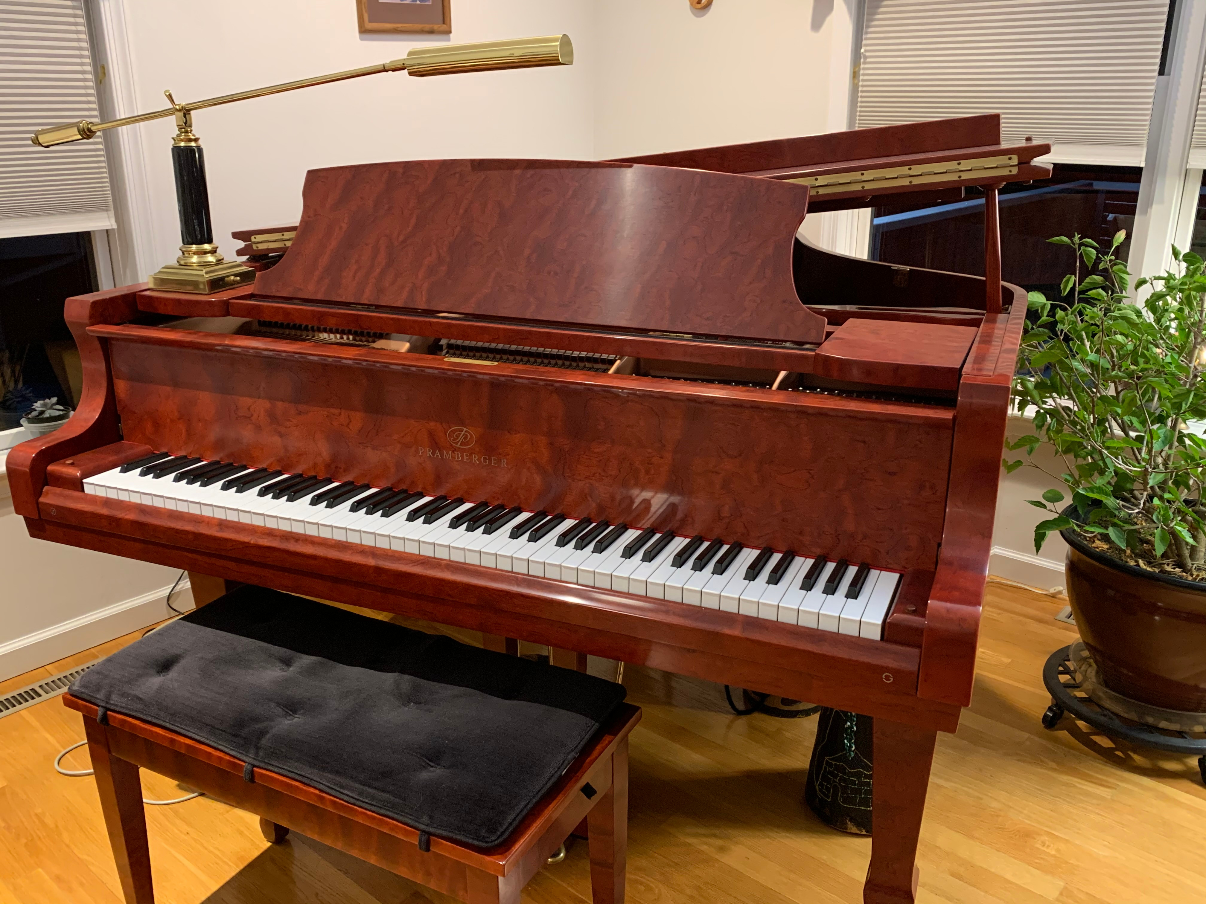 Beginning and Intermediate Piano Lessons
