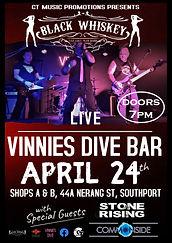 Vinnies Dive-24th April 2021-Poster FINA