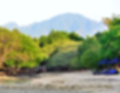 sun loungers on private beach at menjangan resort in menjangan, west bali, bali off the beaten track
