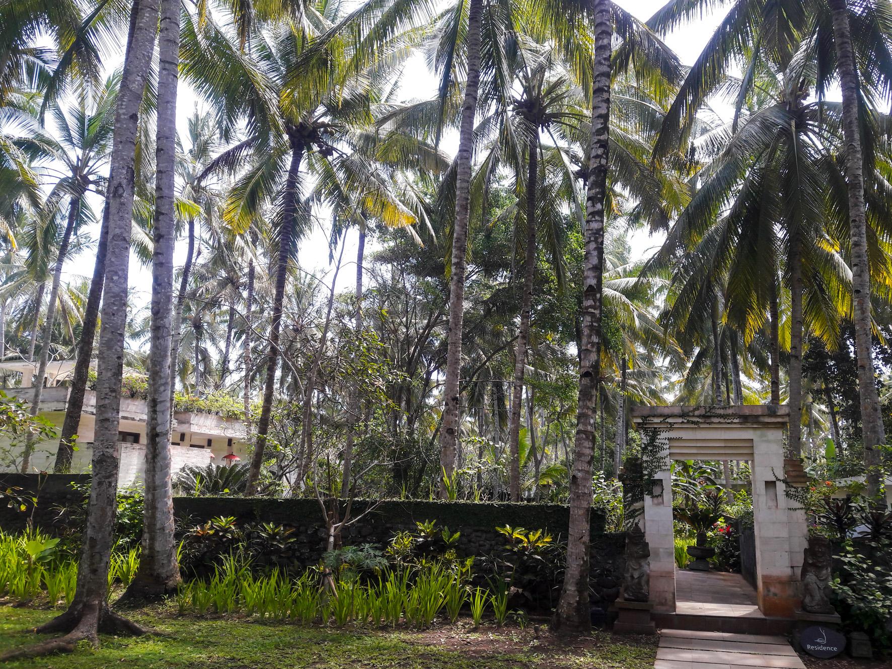 Kelapa Retreat near Medewi