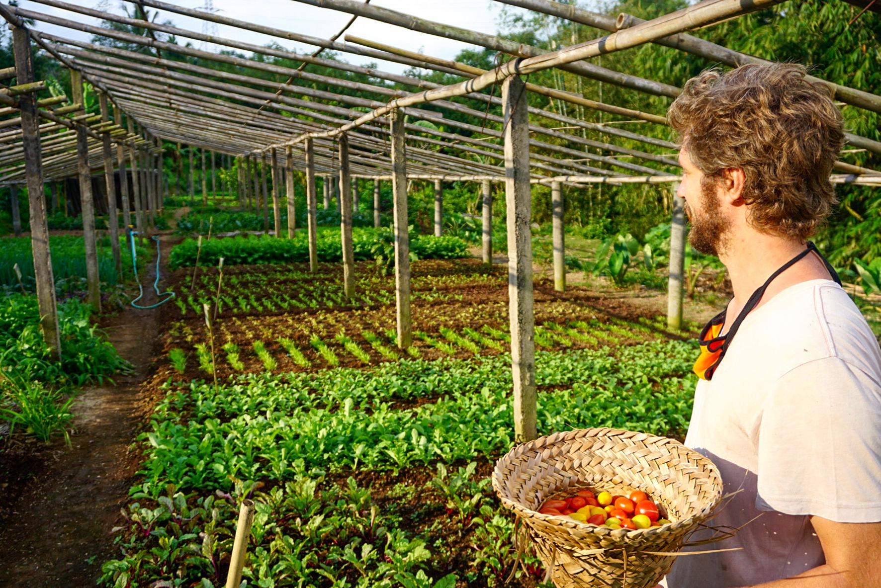Temuku farm workshop Balian