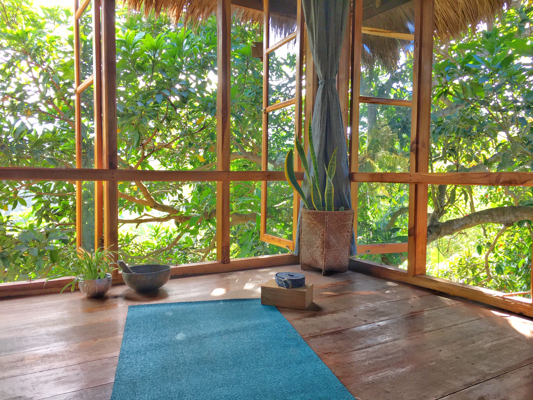 Writers Treehouse yoga