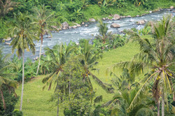 West Bali scenic road-1
