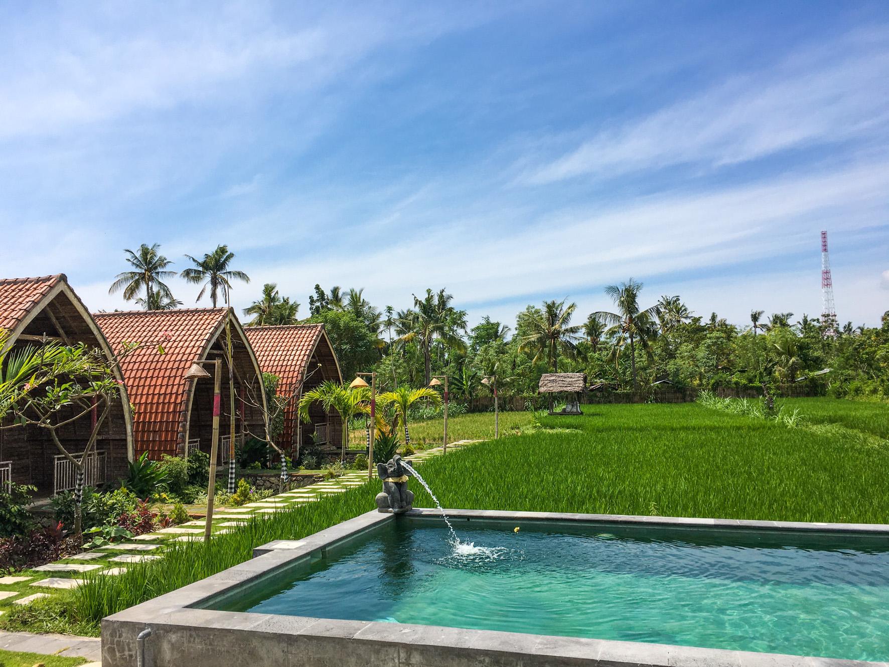 Umma Bali Menjangan Retreat-12