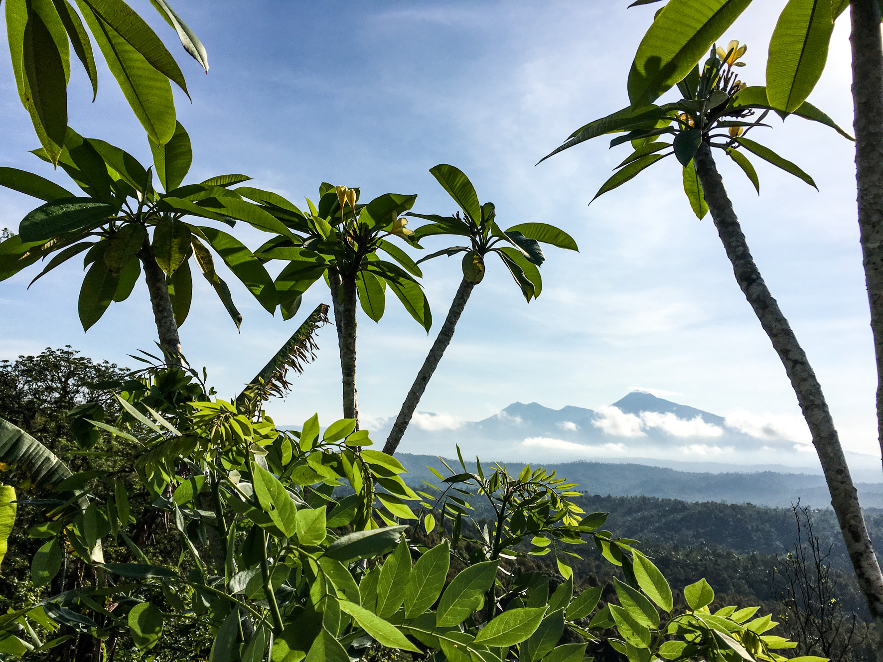 West Bali Scenic Road