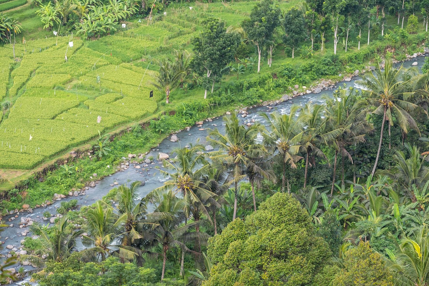 West Bali scenic road-2
