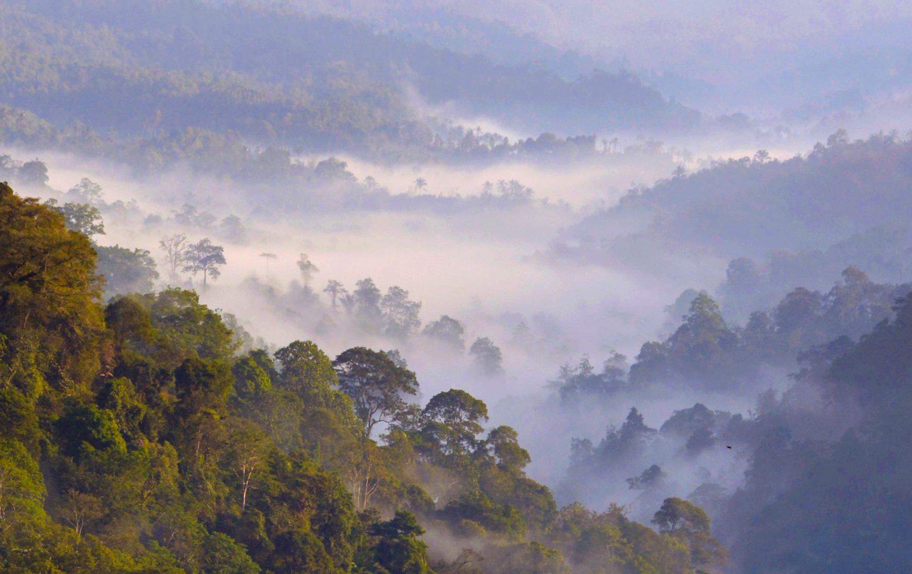 West Bali scenic road-9