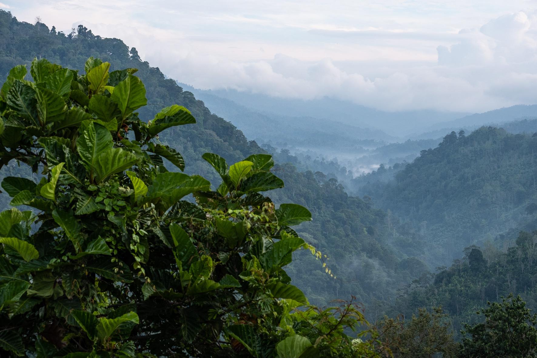 West Bali scenic road-6